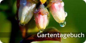 b_gartentagebuch