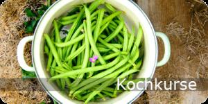 kochkurse-x